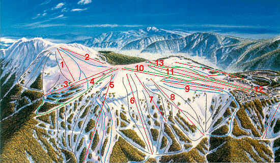 Mount Buller Piste / Trail Map