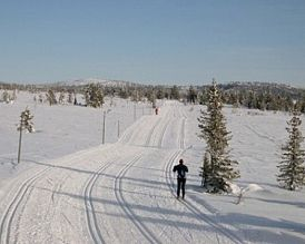 Sjusjoen photo